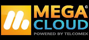 Mega Software